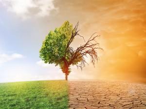 L'urgence n'est pas climatique…