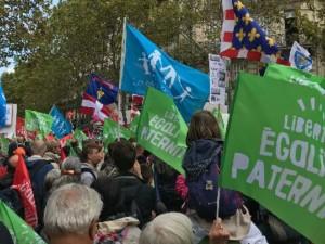 Manif du 6 : l'avis du politologue Guillaume Bernard