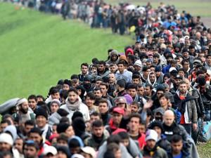 Migrants en France. Pas de RSA mais…